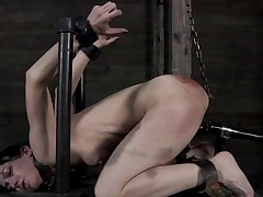Clamped up beauty acquires her fuck holes tortured